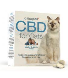 CBD-Pastillen für Katzen