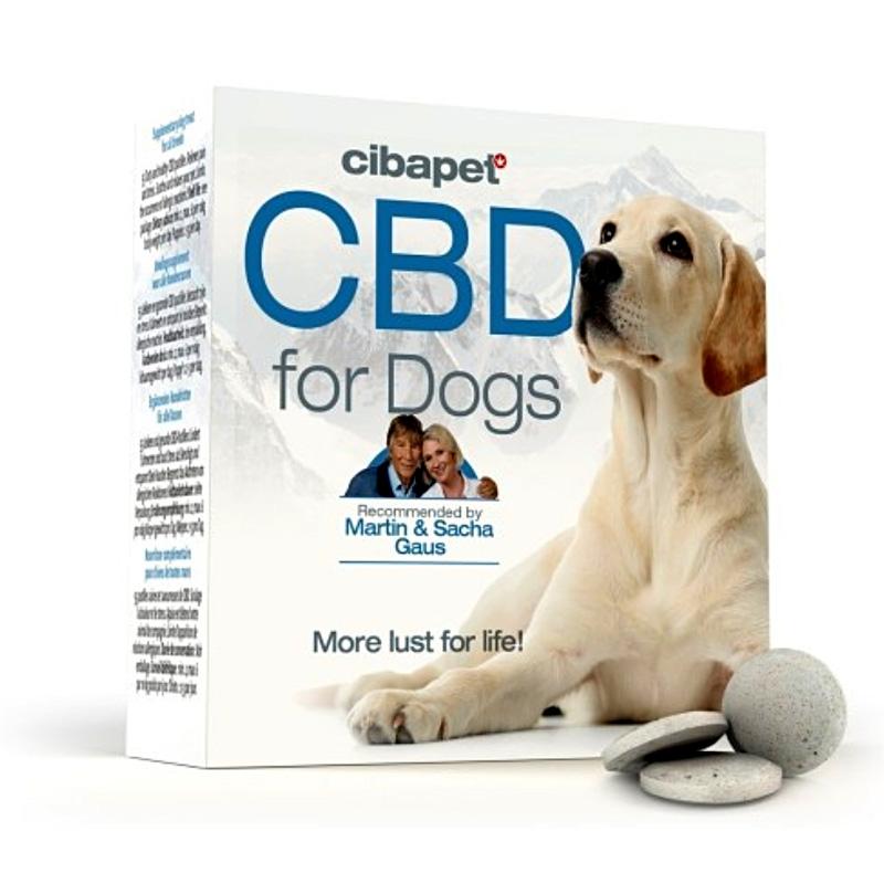 CBD-Pastillen für Hunde