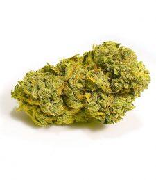 CBD Blüten Super Lemon Haze