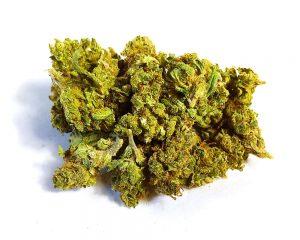 CBD Blüten Green Passion