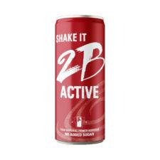 2B-Active